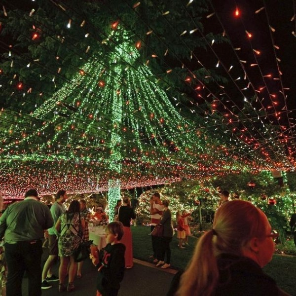 christmas celebration australia