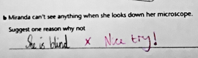 funny test answers 33 (1)