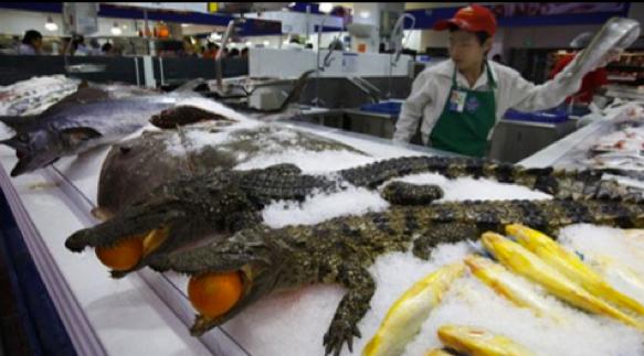 Wal Mart In China