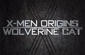 x_men_wolverine_cat_t