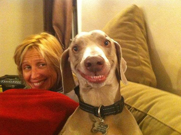 22 Hilariously Derpy Animals