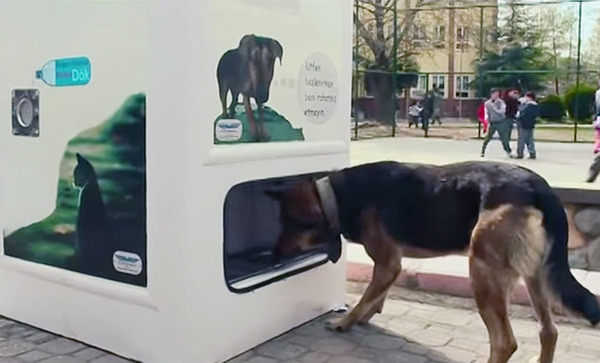 dog vending machine