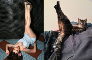 cats modeling