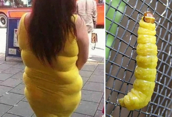 25+ Things That Are Hilariously Similar To Each Other