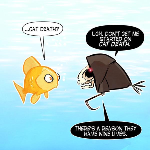 cat death