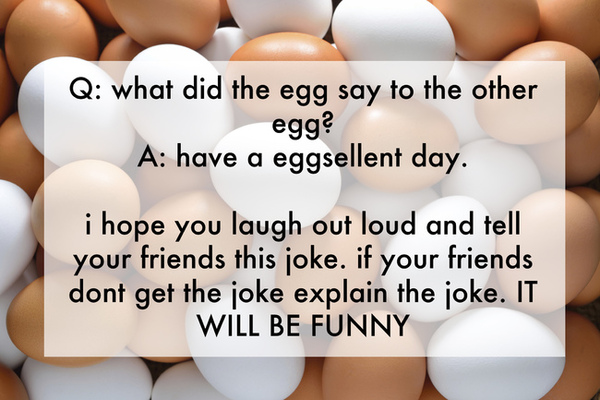 funny kids jokes