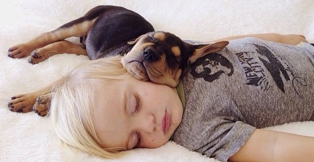 kids and their pets
