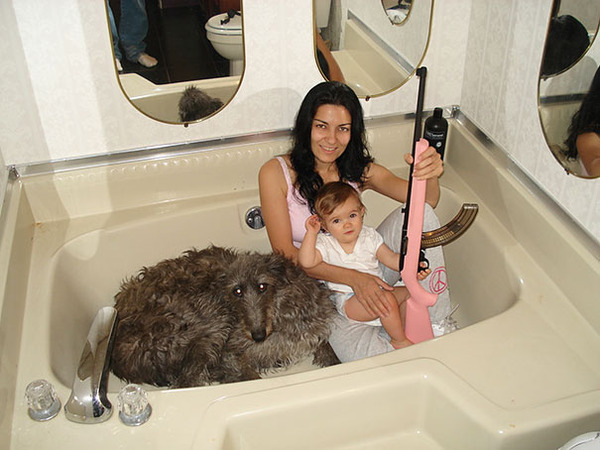 collection of wtf photos