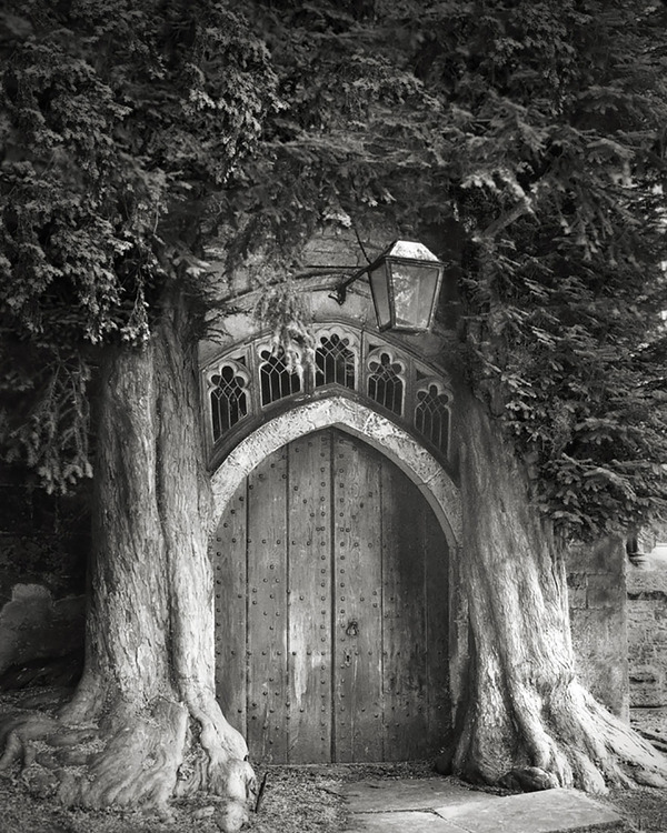 Beth Moon photography