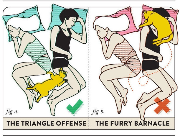 10 best sleeping positions for couples 6