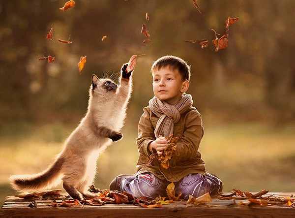 kids and cats together23