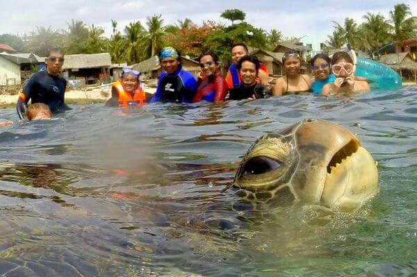 funniest animal photobombs 1