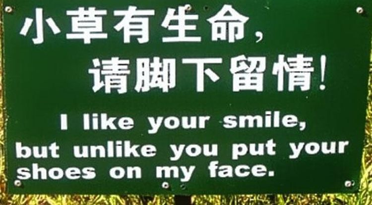 funny Chinese translations10