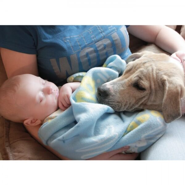 baby-sleeping-with-dog_700x700_Getty-95594507