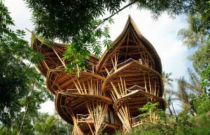 Sustainable Bamboo Homes