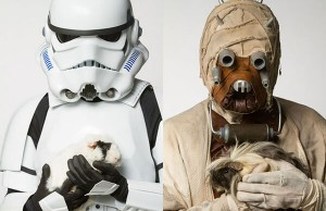 star wars theme photo-shoot with shelter animals
