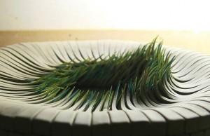 blades of grass 1