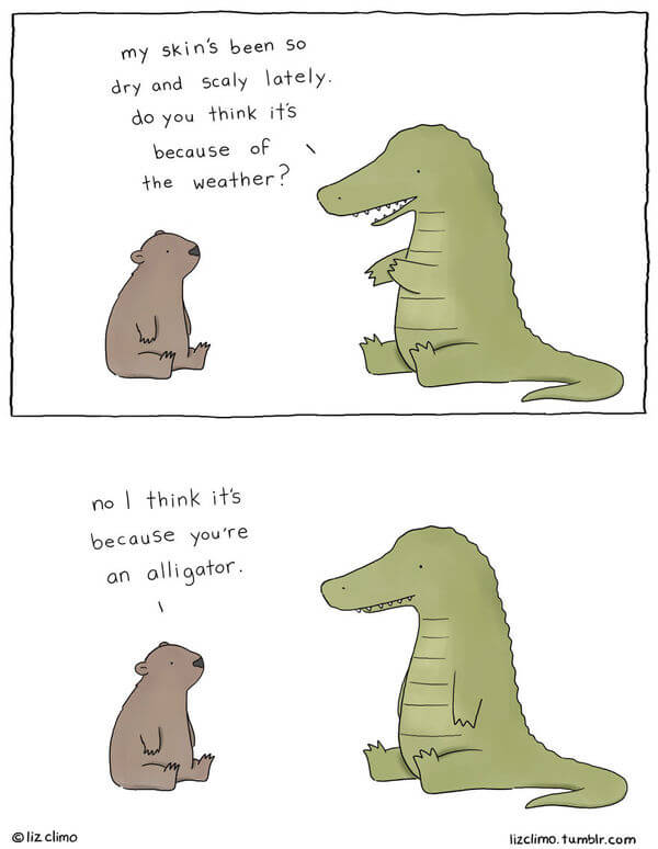 liz climo animal illustrations 22
