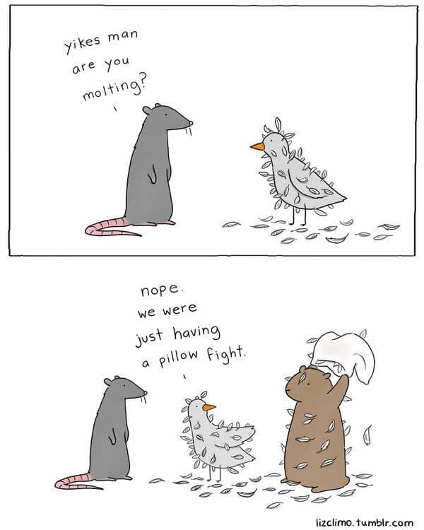 liz climo animal illustrations 24