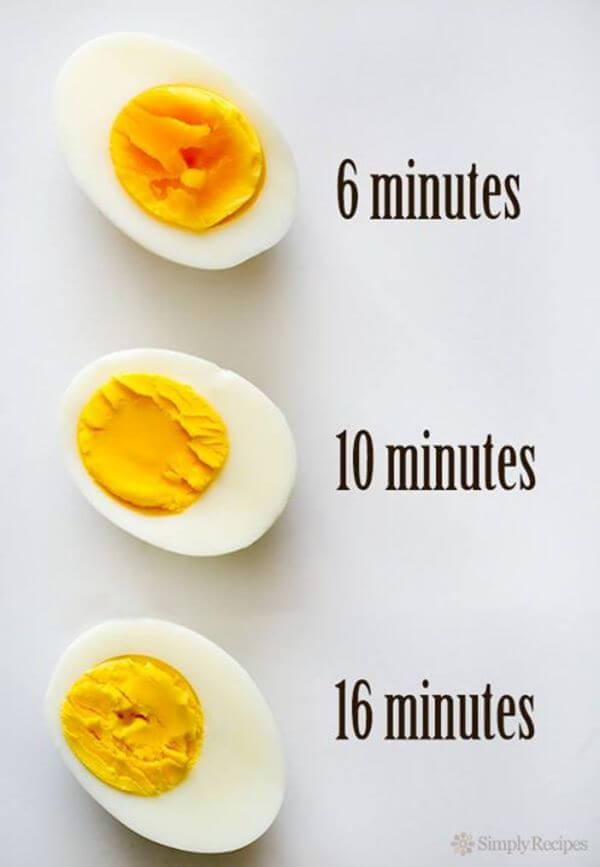The Complete Guide On Cooking Eggs Everyone Needs In The
