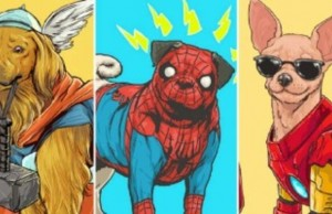 superheros as dogs 32