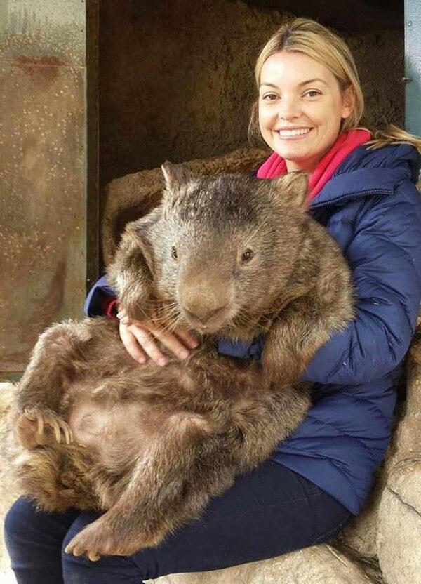 worlds oldest living wombat 9