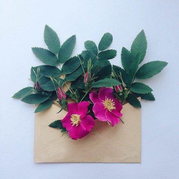 flower envelope