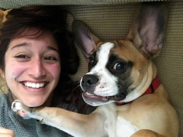 I Wanna Teach My Dog Friends