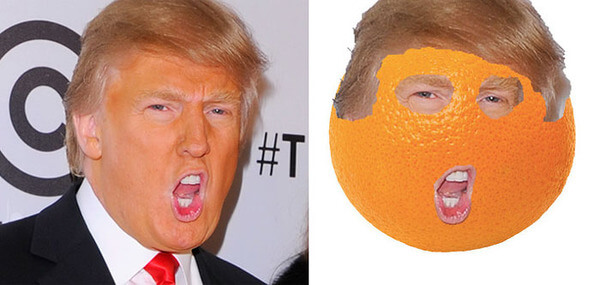 Donald trump looks like 15