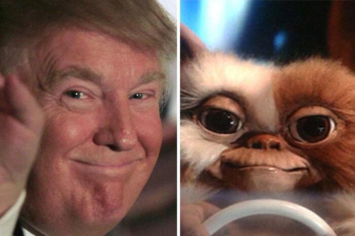 Donald trump looks like 19