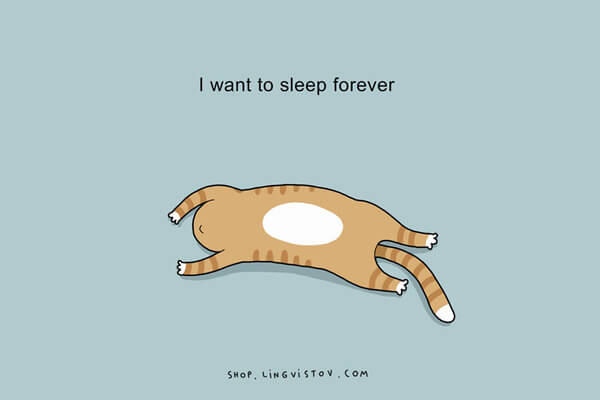 Illustrations That People Who Love Sleeping Will Understand 10