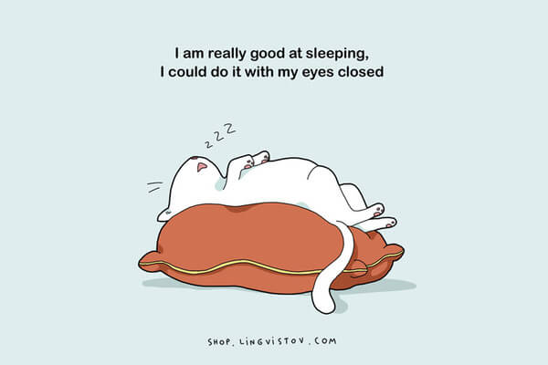 Illustrations That People Who Love Sleeping Will Understand 7