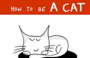 how to be a cat feat (1) (1)