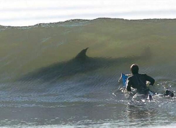 do you fear the sea? 12