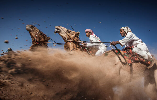 winning shots from national geographic contest 4