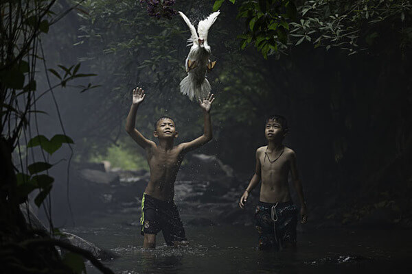 winning shots from national geographic contest 6