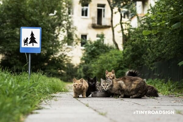 tiny road signs for animals 8