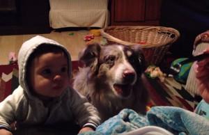 dog says momma 1