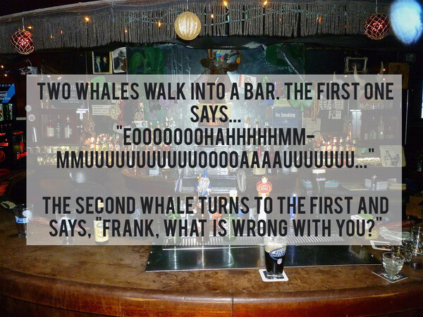 funny dark jokes 13