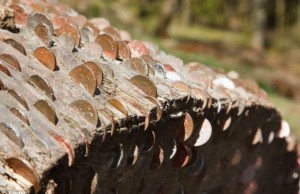 coin wishing trees 4