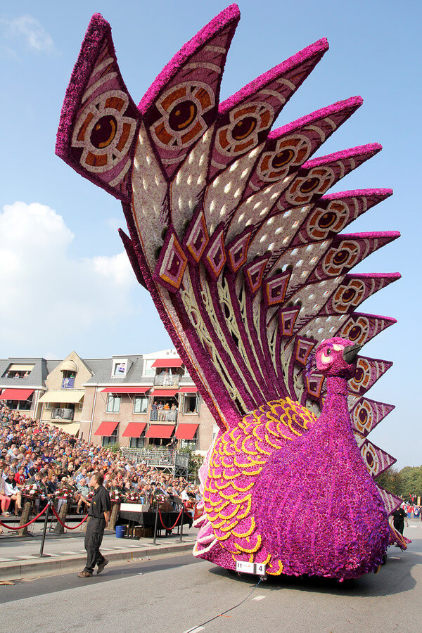 world's largest flower parade 7