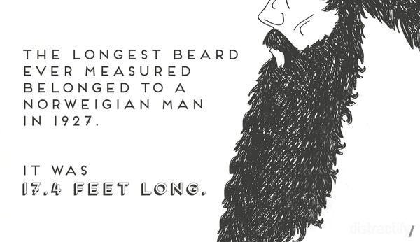 facts about beards 11