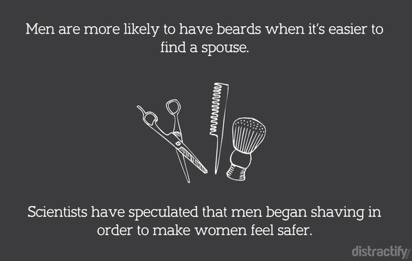 facts about beards 8