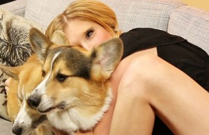 a-guy-surprised-his-girlfriend-with-corgis-and-it-2-1122-1445277836-11_big