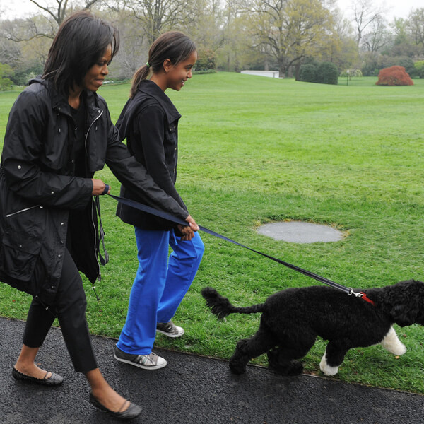 obama's dog pictures 7