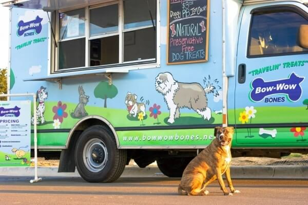 Doggy Vending Machines Are Now A Thing And It Is Awesome!