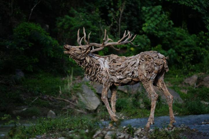 drifted wood turned into animal sculptures 8