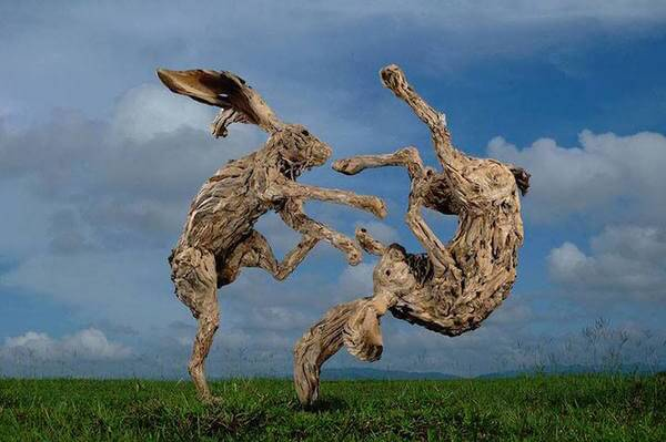 drifted wood turned into animal sculptures 7
