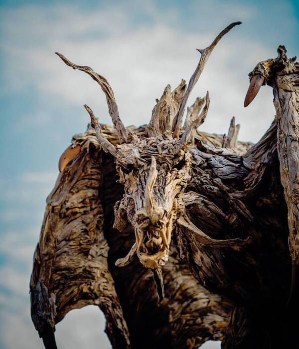 drifted wood turned into animal sculptures 5