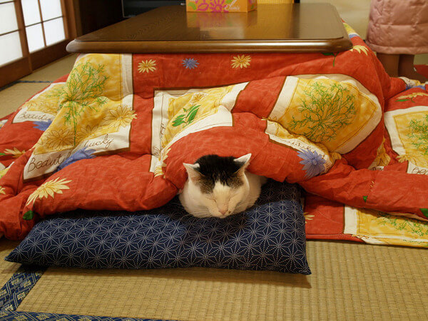 Japanese Invention Will Keep You In Bed All Day 8